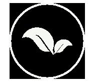 icono-armonia-medio-ambiente_03