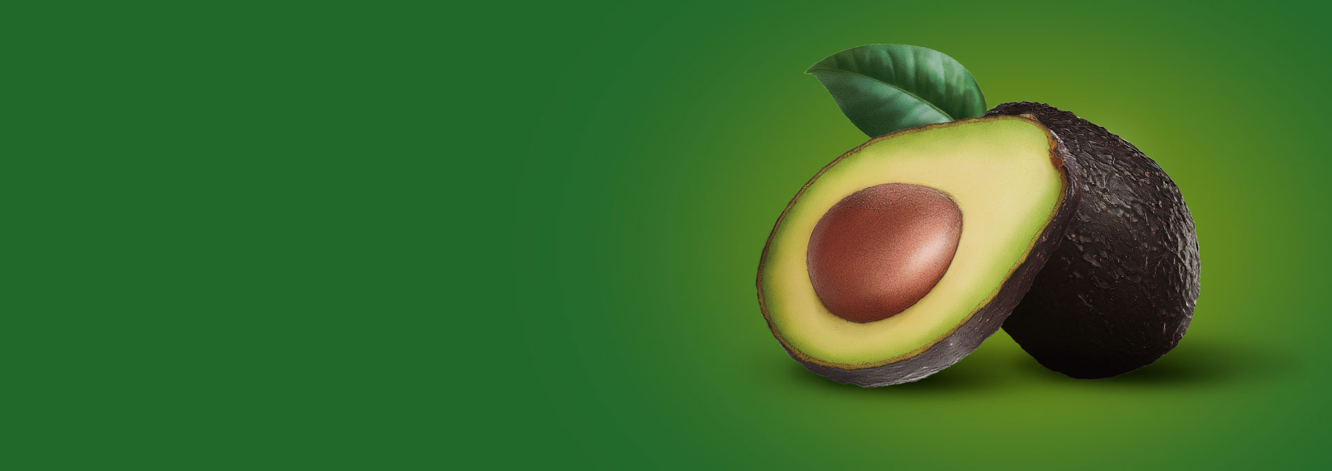 aguacate-banner_02